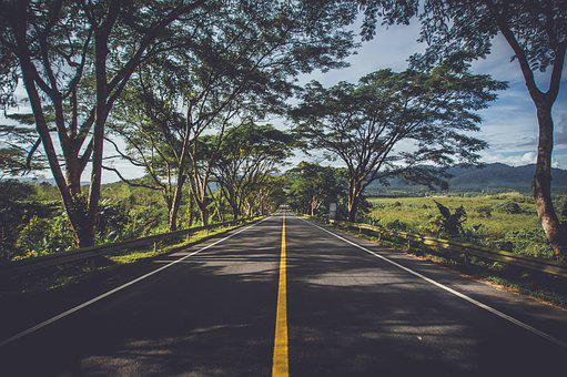 Asphalt, Environment, Grass, Highway