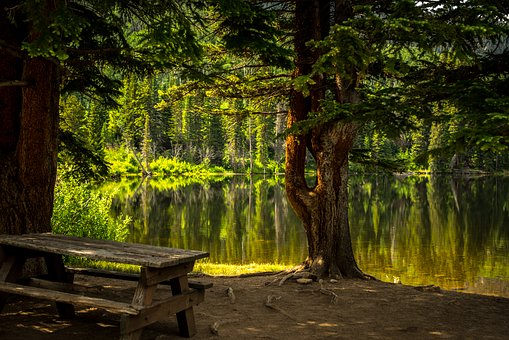 Park Bench Images Pixabay Download Free Pictures