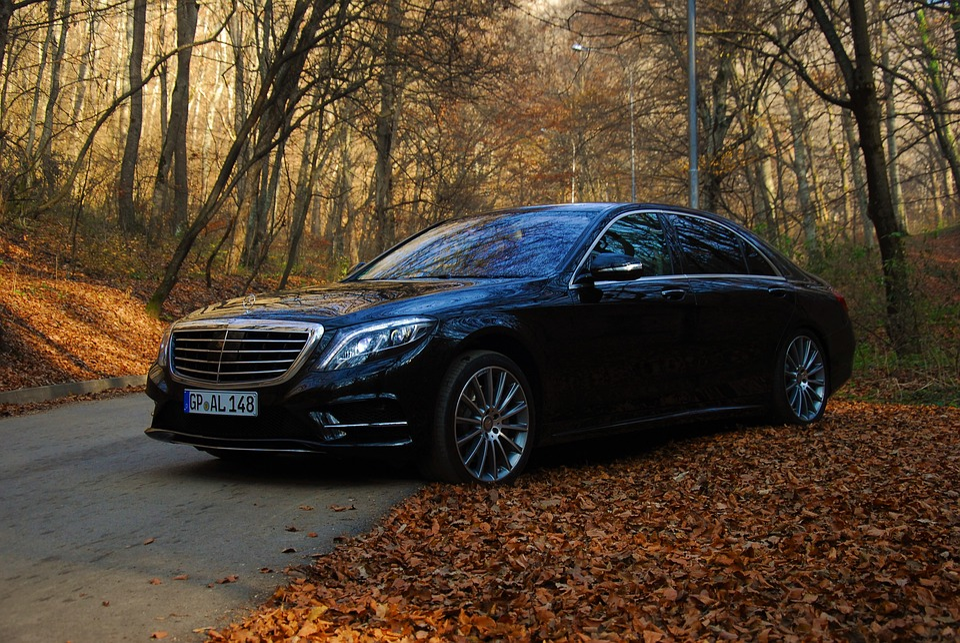 Auto, Autumn, Benz, Luxury Car, Mercedes, S Class, car types