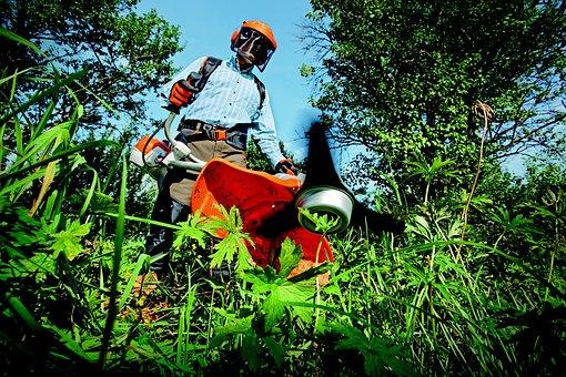 Garden, Grass Cutter, Gardening, Grass