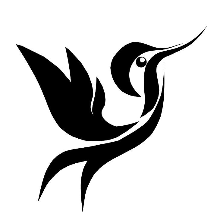 kolibri lintu kuva ilmainen kuva pixabayssa. Black Bedroom Furniture Sets. Home Design Ideas