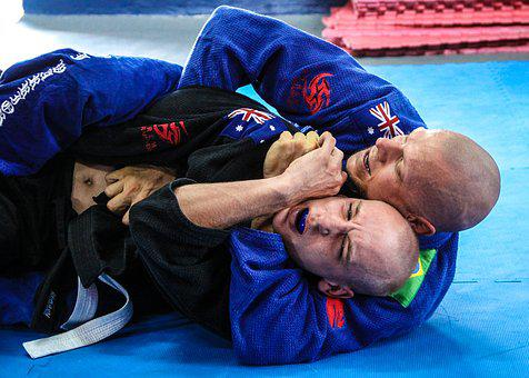 Jiu-Jitsu, Fight, Martial Arts