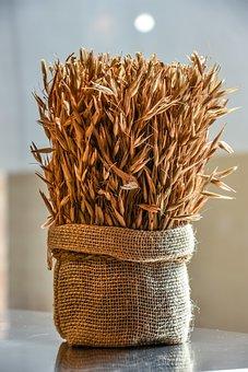 Weizen, Korn, Landwirtschaft, Ernte