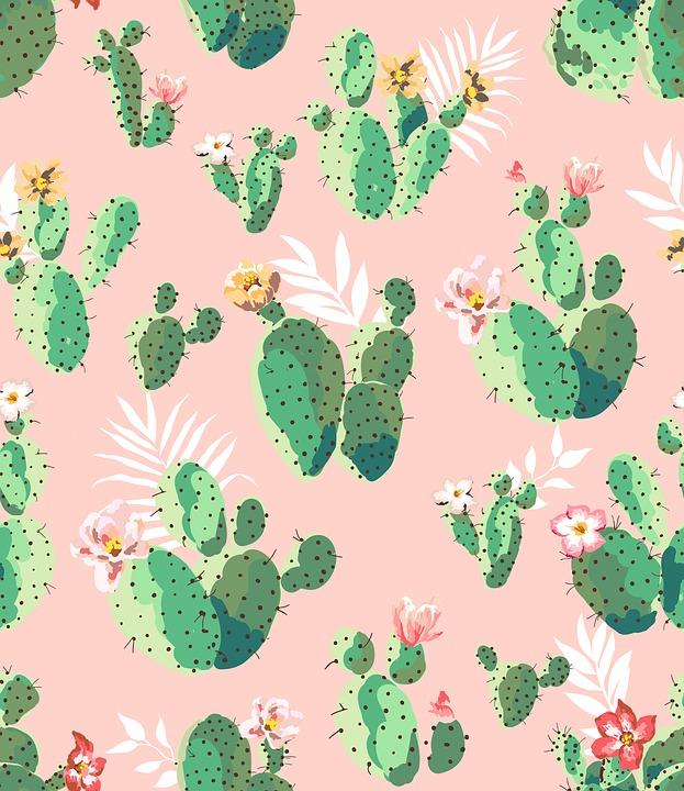romantic places cactus clouds - photo #34