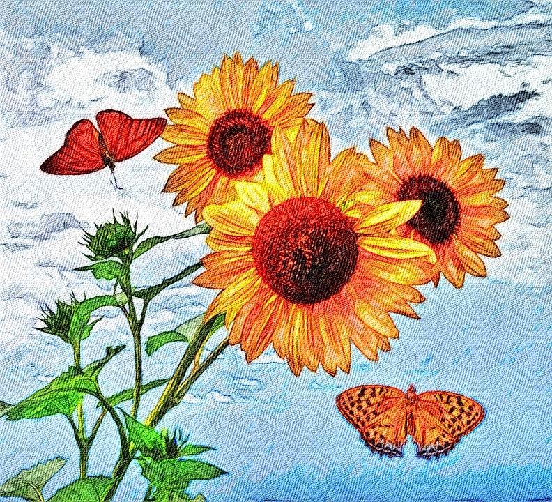Ayçiçeği Yaz Boyama Pixabayde ücretsiz Resim