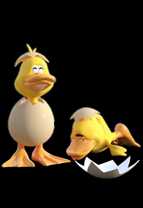Egg Duck Place 183 Free Image On Pixabay