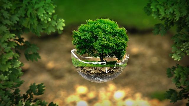 free photo  environment  ecology  nature - free image on pixabay