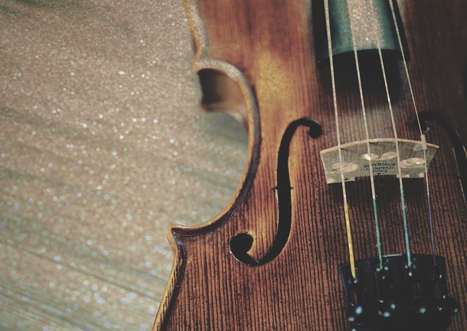 violin fiddle instrument · free photo on pixabay