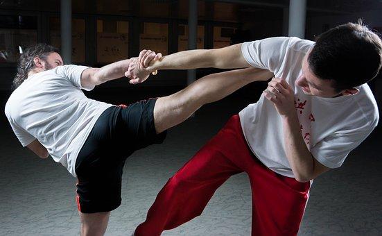Kung Fu, Fighting, Martial Arts, Mma