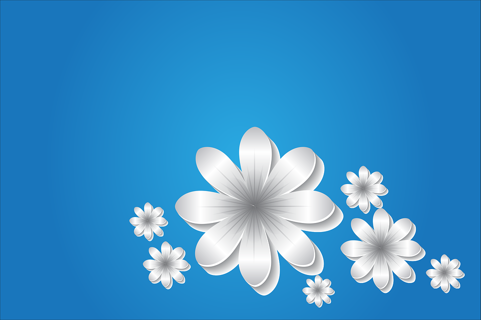 Flowers Background Blue Free Vector Graphic On Pixabay
