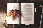 read, nature, literature