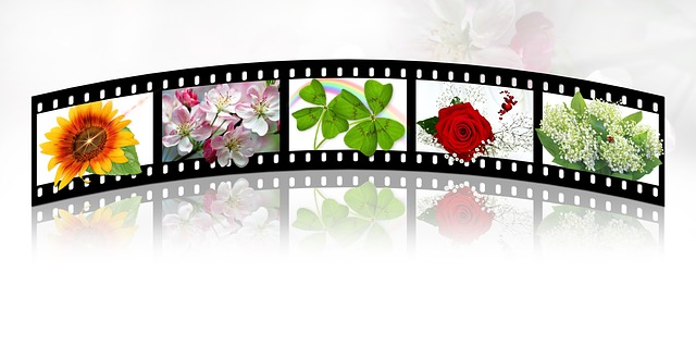 Free illustration filmstrip film roll film free image - Clipart cinema gratuit ...