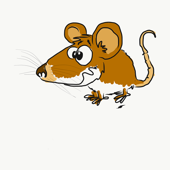 Topi cartone animato immagini gratis su pixabay