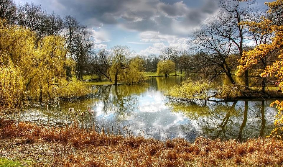 free photo  park  braunschweig  nature  germany