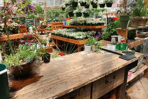 Garden Center, Garden, Floral, Plant