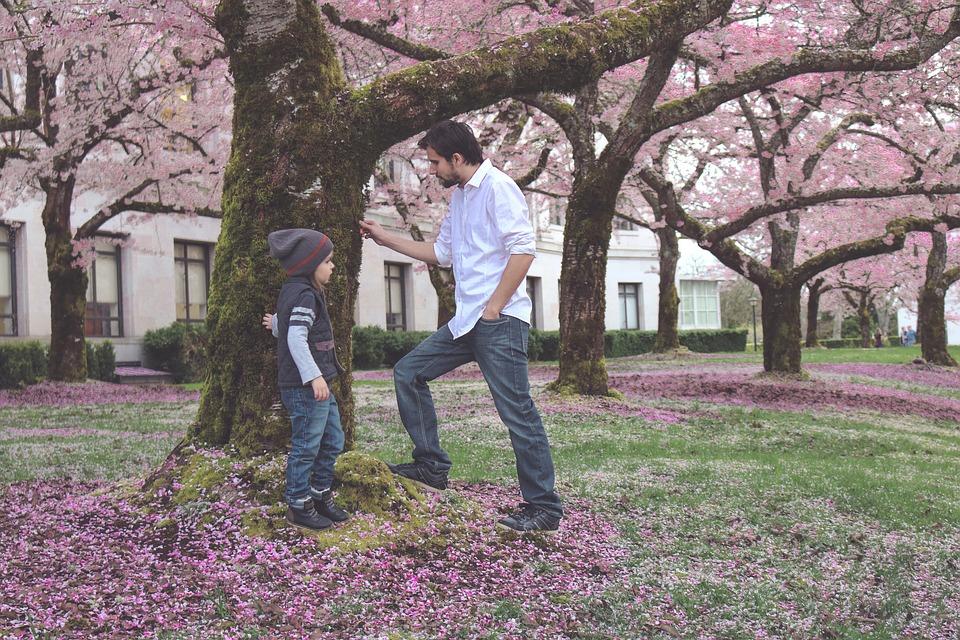 Padre, Hijo, Primavera, Bloom, Flor, Niño, Familia