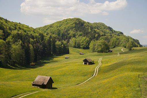 Natur, Wandern, Schweiz, Jura, Baselbiet