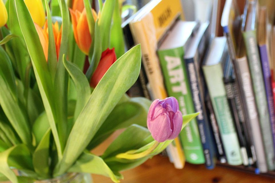 Lampada Fiore Tulipano : Tulipani primavera lampadine · foto gratis su pixabay