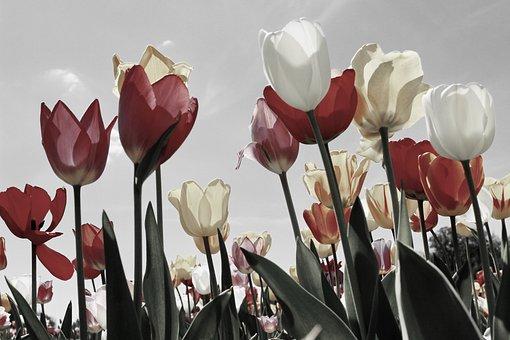 雀啡春季穿风衣这样搭配 天天都美美哒
