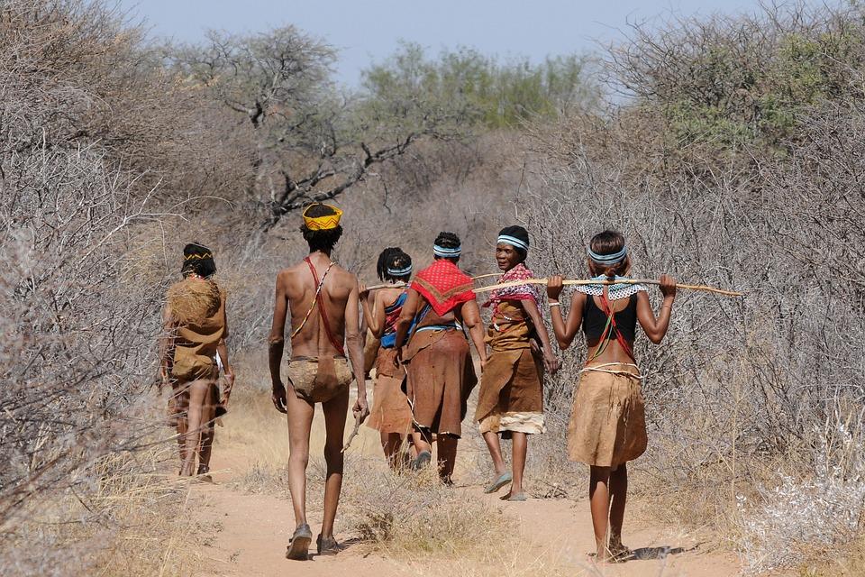 博茨瓦纳, 布须曼人, 团体, 收集, 原始人, 传统, 返校节