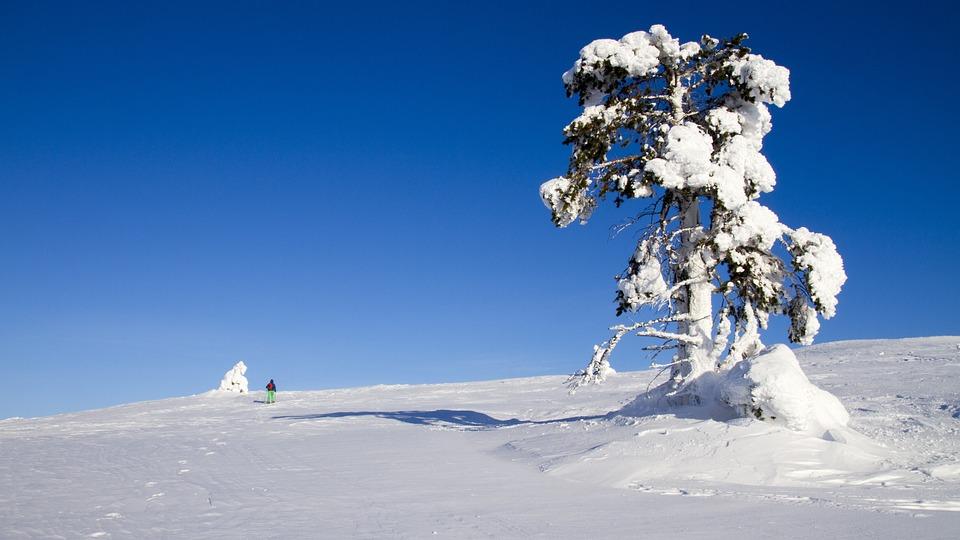 bieganie zimą - jak wybrać buty sportowe