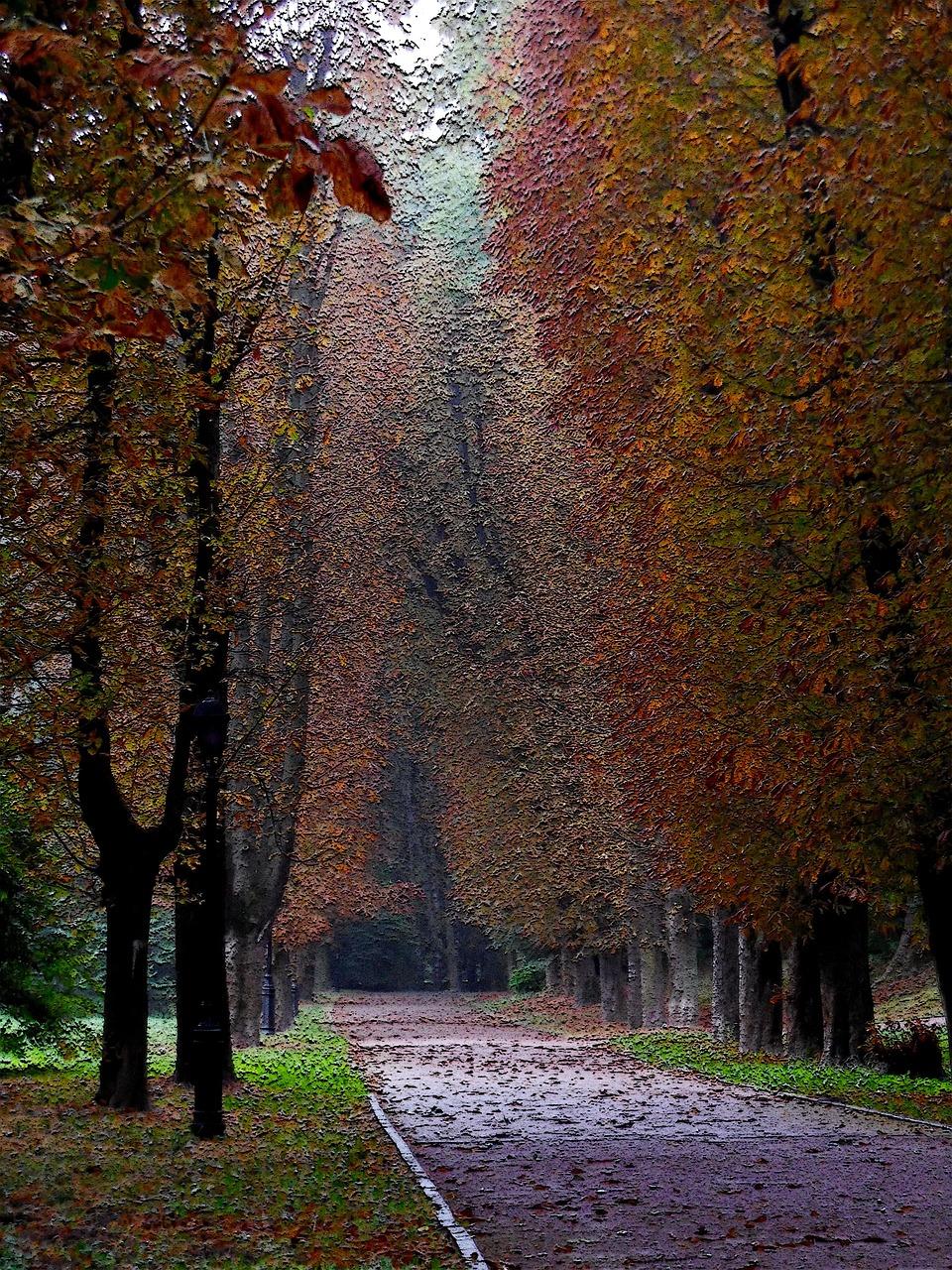 Открытки с использованием осенних листьев всегда