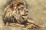 lion, lying down, art