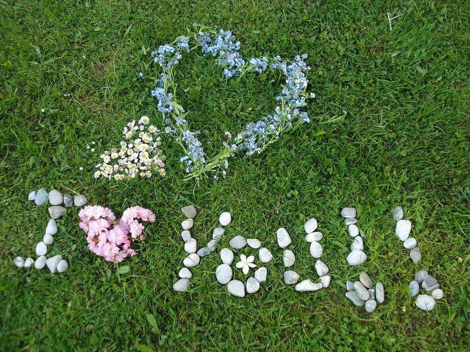 I Love You Heart Grass Flowers ValentineS Day