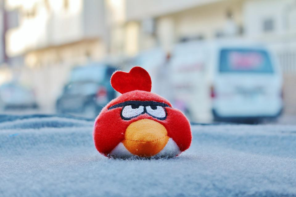 red angry bird