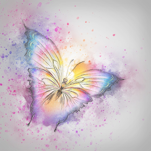 free illustration  butterfly  insect  art  abstract - free image on pixabay