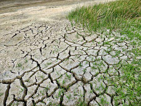 Climate Change, Drought, Climate, Dry