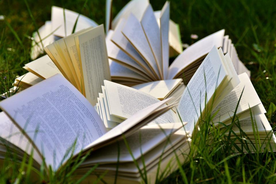 Bücher, Buchseiten, Aufgeschlagen, Lesen, Literatur