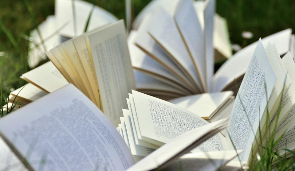 Books, Book Pages, Pitched, Read, Literature, Pages