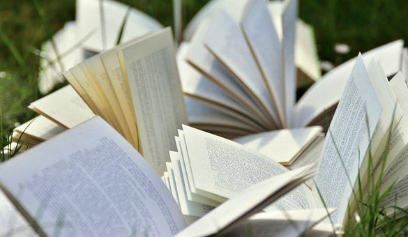图书, 书页, 安营, 读取, 文学, 页, 纸, 开放, 打开书, 学习