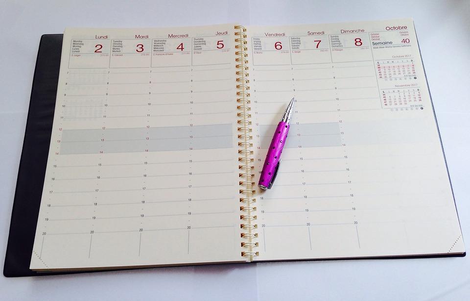 日記, 1 週間, オフィス, 学校, 研究, ペン, 先生