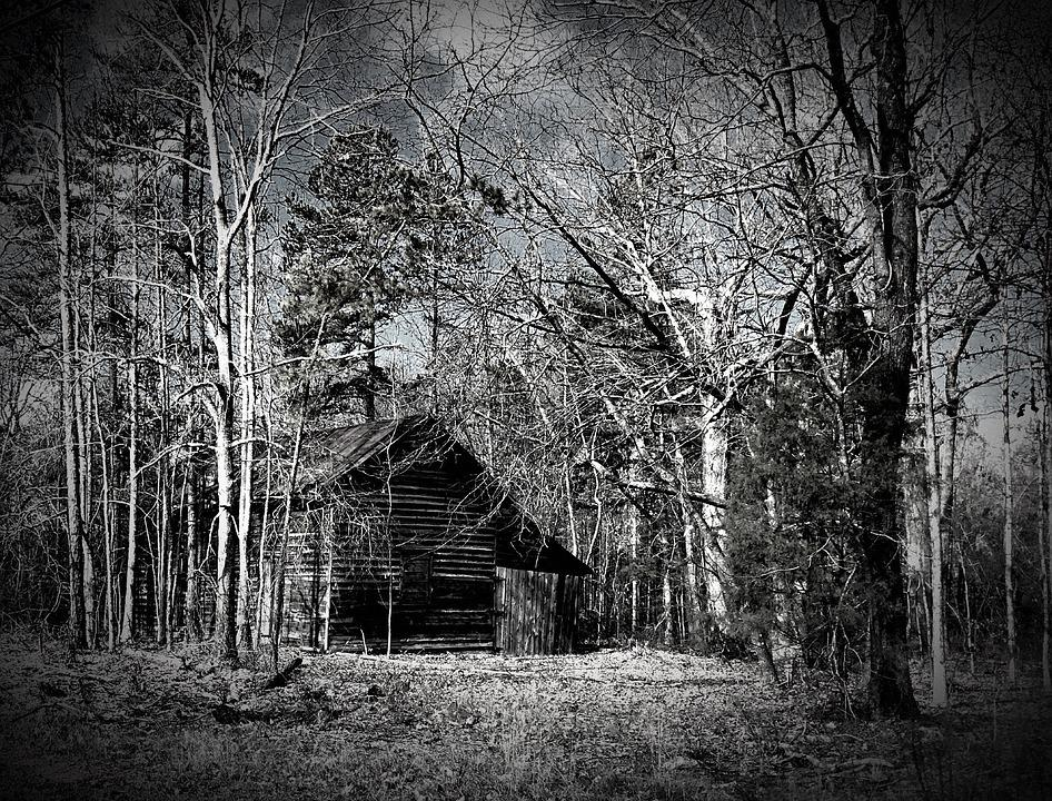 Old Barn Rustic Black And White Aged Woods Wood