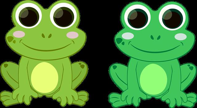 Rana Verde Sapo · Gráficos Vectoriales Gratis En Pixabay
