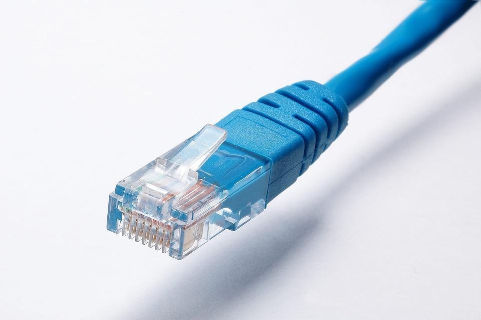 Netzwerkkabel, Netzwerk, Kabel, Daten, Ethernet