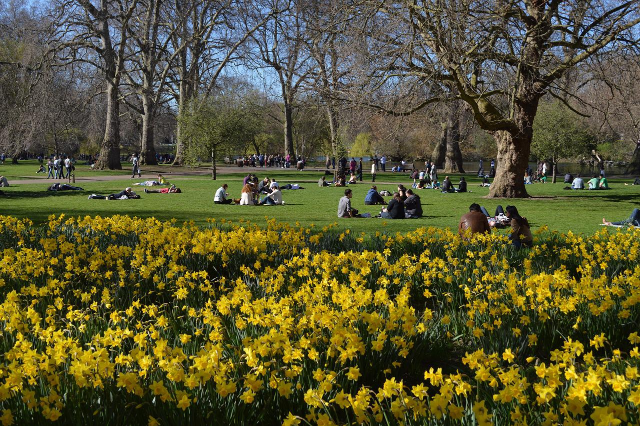 Картинки с лондоном парки лондона