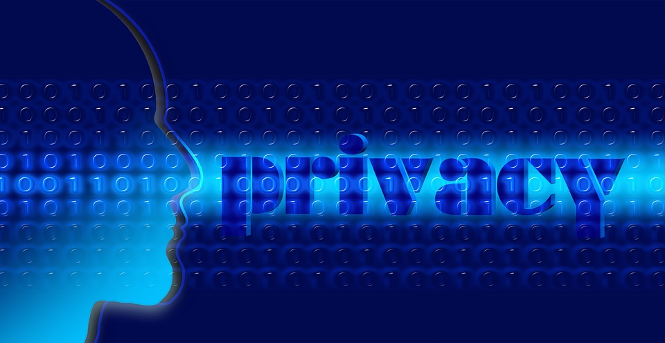 data privacy (source Pixabay)