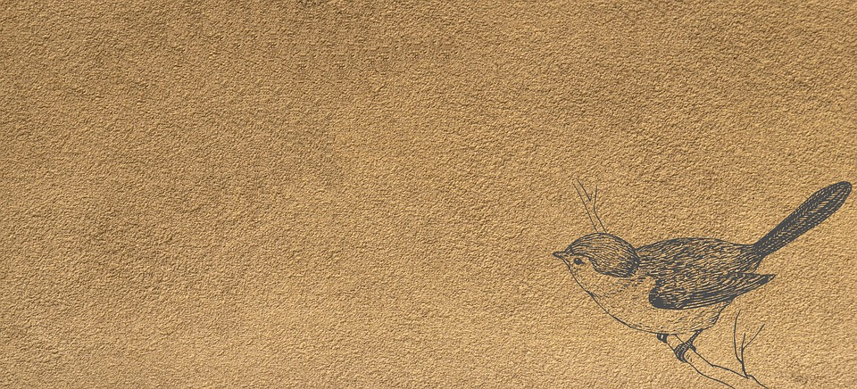 χαριτωμένο τύπος μεγάλο πουλί