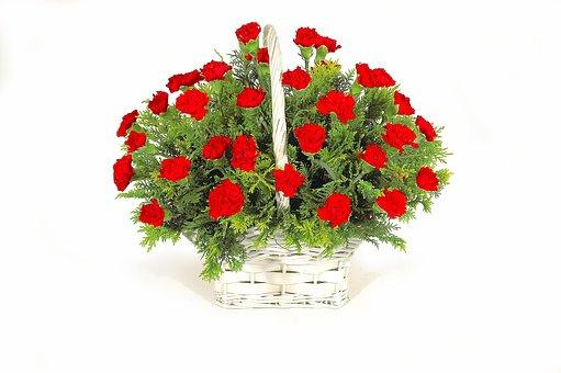 花, バスケット, 緑, カーネーション赤