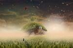 landscape, boy, grass