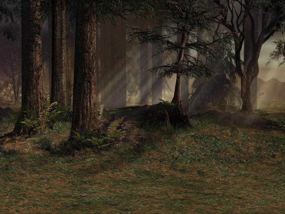 Background Forest Trees · Free image on Pixabay