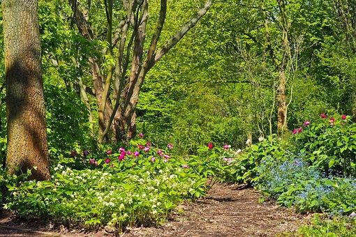 Landscape, Field, Nature, Agriculture