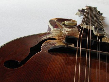 Mandolin Bluegrass Mandolin F Mandolin Jad
