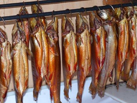 Char, Fischraeucherei, Fish, Smoked