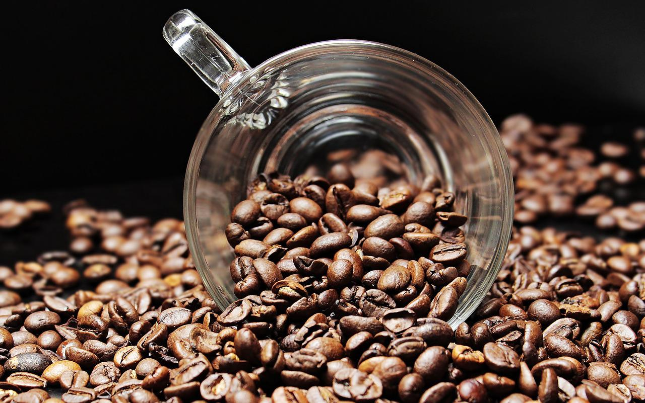 Organic Fair Trade coffee – What Exactly Is It?
