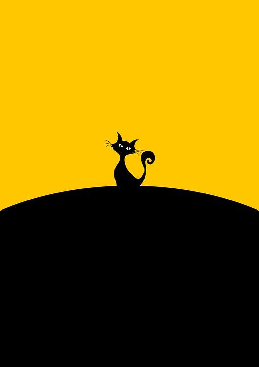 Creampie tesný mačička