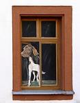 window, illusion, art